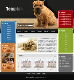 宠物养殖场网站