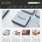 软件公司网站