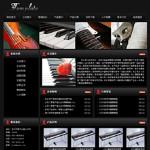 乐器制造企业2