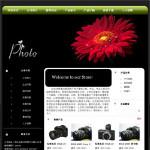 数码摄影器材公司网站模板